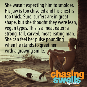 chasing swells teaser