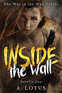 inside-the-wall